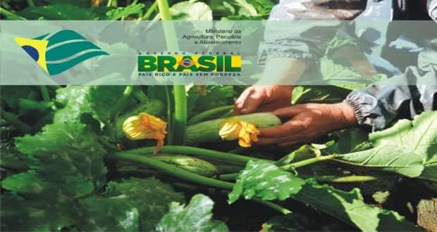 Agricultura terá nova organizadora para concurso com 736 vagas