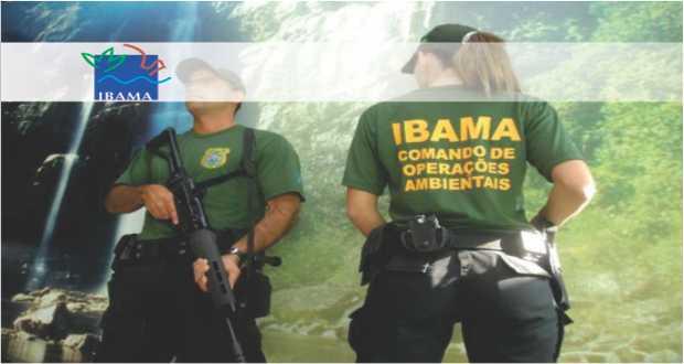 Autorizado Processo Seletivo para 20 vagas no Ibama