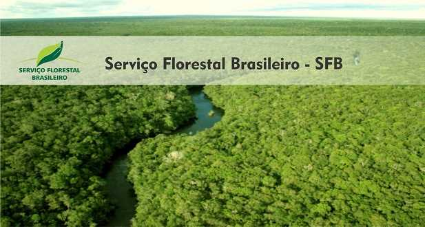 Serviço Florestal Brasileiro-SFB divulga demanda e locais de provas