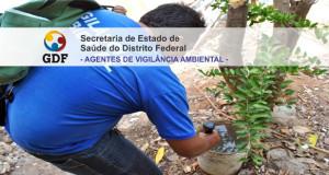 concurso-sesdf-agente-vigilancia-2015