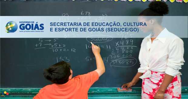 Processo Seletivo SEDUCE-GO: Resultado preliminar para Professor Temporário