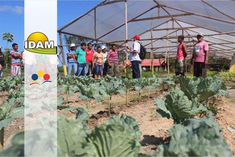 Concurso IDAM: Inscrições Prorrogadas para 227 vagas com iniciais de até R$ 6,5 mil!