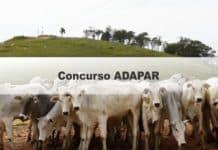 Concurso ADAPAR