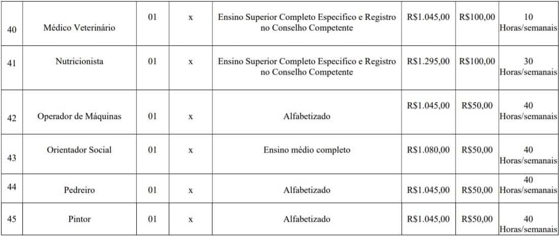 cargos lotes 6 - Concurso Prefeitura de Imbé MG: Inscrições abertas com 108 vagas