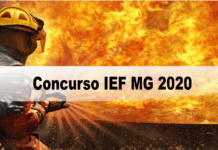 Concurso IEF MG 2020
