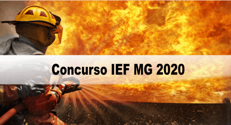 Concurso IEF MG 2020: Inscrições encerradas!