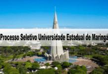 Processo Seletivo Universidade Estadual de Maringá