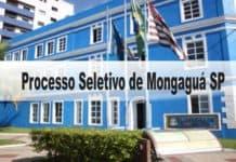 Processo Seletivo Prefeitura de Mongaguá SP